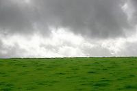 Landscape, Kilkenny, Ireland