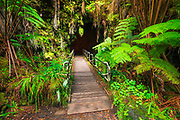 The entrance to the Thurston Lava Tube, Hawaii Volcanoes National Park, Hawaii USA
