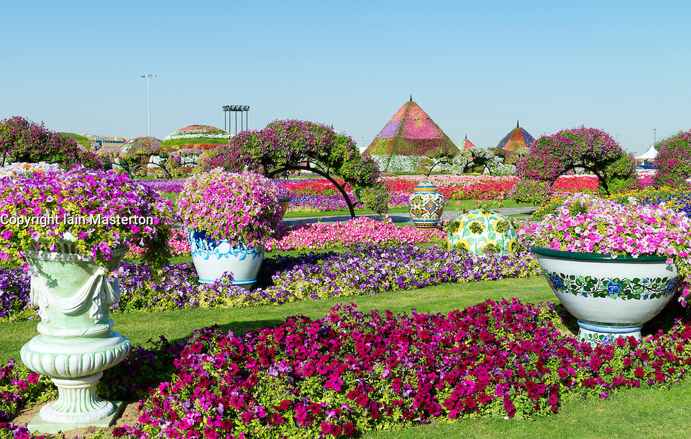 Miracle Garden in Dubai UAE, Opened in February 2013 and claimed to be World's largest flower garden; United Arab Emirates.