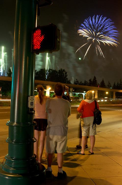 Firework, Disney Resort, Anaheim, Los Angeles, California, United States of America