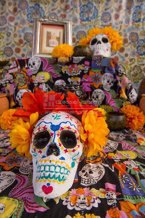 dia de los muertos family day