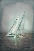 Two Sailboats in San Francisco Bay, California, U.S.A.