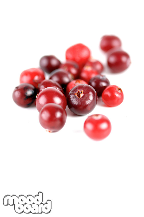 Cranberries on white background - studio shot