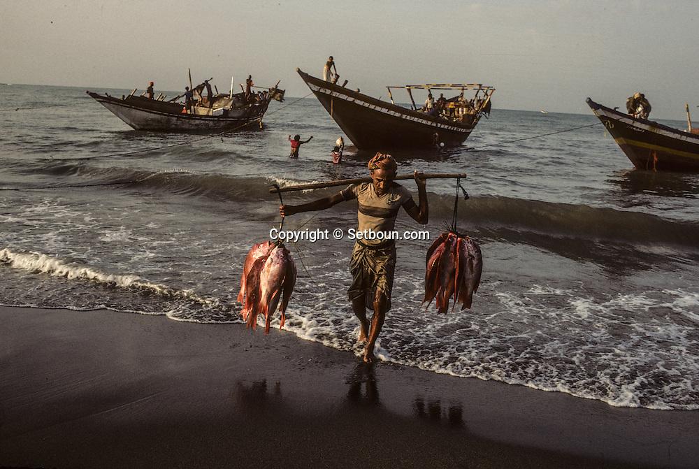 Yemen. Hodeidah.  street scene  Hodeida  Yemen      /  marche aux poissons et pécheurs sur la plage de  Hodeida  Hodeida  Yemen