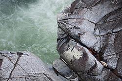 La Reserva Valle del Mamon&iacute;<br /> En el punto m&aacute;s angosto del hemisferio occidental, en el que tan s&oacute;lo 50 kil&oacute;metros separan el oc&eacute;ano Pac&iacute;fico del Atl&aacute;ntico, existe un corredor de bosque primario y valles ricos en diversidad biol&oacute;gica. Para cientos de especies de aves migratorias, es la vereda verde entre las Am&eacute;ricas. Para los ind&iacute;genas Gunas, es la divina Madre Tierra de su territorio semiaut&oacute;nomo. En el centro de este puente de vida de la divisoria continental en la provincia de Panam&aacute;, se encuentra la cuenca superior del R&iacute;o Mamon&iacute;.&copy;Victoria Murillo/Istmophoto.com