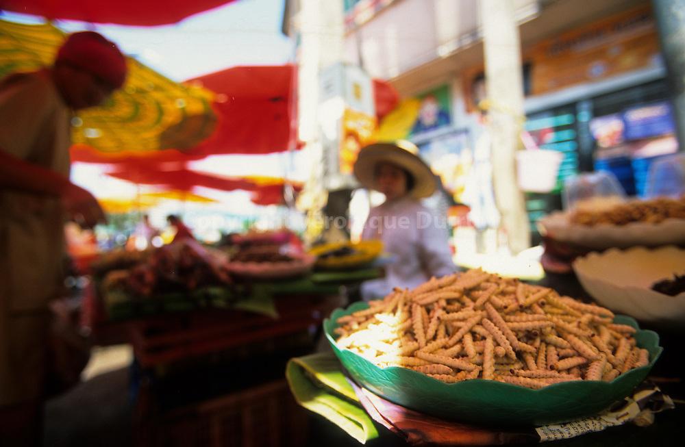 Thai perfumes : Thai Food. larva for eat, in a market of Chiang Mai, Thailand // larves à déguster, dans un marché de Chiang Mai, dans le Nord de la Thailande