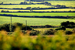 UK CORNWALL ST IVES 10JUN08 - Landscape near St Ives in Cornwall, western England...jre/Photo by Jiri Rezac / WWF UK..© Jiri Rezac 2008..Contact: +44 (0) 7050 110 417.Mobile:  +44 (0) 7801 337 683.Office:  +44 (0) 20 8968 9635..Email:   jiri@jirirezac.com.Web:    www.jirirezac.com..© All images Jiri Rezac 2008 - All rights reserved.