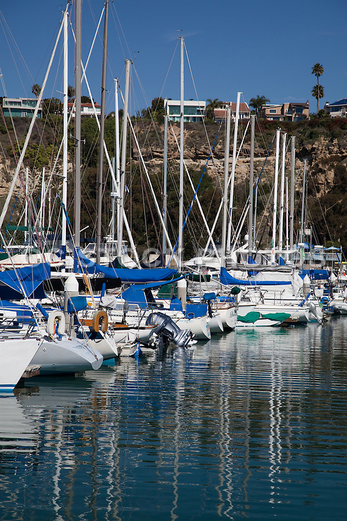Sailboats In The Dana Point Harbor