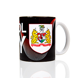 Bristol Sport Product Shoot - Mandatory byline: Rogan Thomson/JMP - 19/11/2015 - SPORT - Ashton Gate Stadium - Bristol, England.