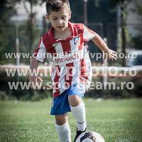2008-Steaua-individuale