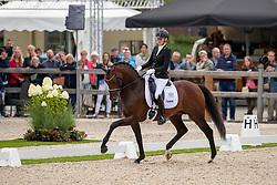 Van Uytert-Van Vliet Renate, NED, Johnny Depp<br /> World Championship Young Dressage Horses - Ermelo 2019<br /> © Hippo Foto - Dirk Caremans<br /> Van Uytert-Van Vliet Renate, NED, Johnny Depp