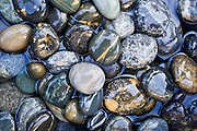 wet stones reflecting the blue sky
