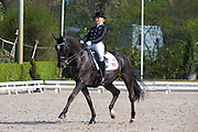 Cecilie Lyndrup - Lambada<br /> CDIPJYR Roosendaal 2013<br /> © DigiShots
