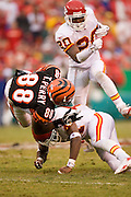 KANSAS CITY, MO - SEPTEMBER 10:  Wide receiver Tab Perry of the Cincinnati Bengals gets tripped up after catching a pass during a game against theKansas City Chiefs on September 10, 2006 at Arrowhead Stadium in Kansas City, Missouri..The Bengals won 23 to 10.  (Photo by Wesley Hitt/Getty Images)***Local Caption*** Tab Perry
