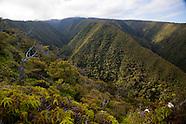 Maui Puu Kukui Watershed