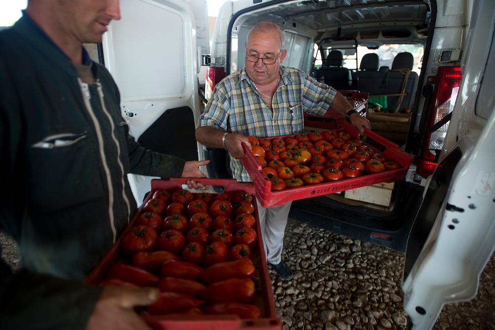 Daniel Gilbert de l'association Les Plaisirs du Jardin visite La Ferme de Julien, producteur des l&eacute;gumes bios et produits r&eacute;gionaux.<br /> Boissy-Lamberville, France. 01/08/2013.