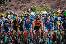 Peloton with riders of Wanty - Groupe Gobert (BEL) at the Posbank during the Arnhem Veenendaal Classic at Rheden, Gelderland, The Netherlands, 19 August 2016.<br /> Photo by Pim Nijland / PelotonPhotos.com | All Rights Reserved