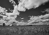 Small house in the middle of a Vermont corn field