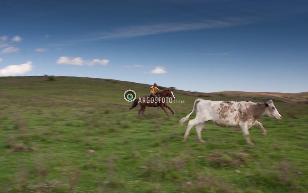 Gauchos na lida com o gado na Fazenda Santa Cecilia, em Bage-RS