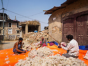 01 MARCH 2017 - BUNGAMATI, NEPAL: Workers sort kapok (used in mattresses and cushions) in front of homes destroyed in the 2015 earthquake. Recovery seems to have barely begun nearly two years after the earthquake of 25 April 2015 that devastated Nepal. In some villages in the Kathmandu valley workers are working by hand to remove ruble and dig out destroyed buildings. About 9,000 people were killed and another 22,000 injured by the earthquake. The epicenter of the earthquake was east of the Gorka district.     PHOTO BY JACK KURTZ