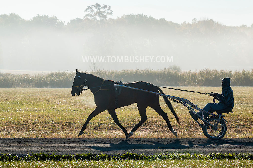 Mount Hope, New York - A harness racing horse works out at the Mount Hope Training Center track on a foggy fall morning on Oct. 15, 2016.