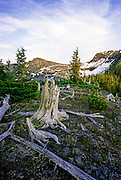 Northwest Peak Scenic Area in summer. Kootenai National Forest in the Purcell Mountains, northwest Montana