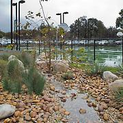 UCSD Muir Campus   Spurlock Poirier