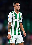 SEVILLE, SPAIN - NOVEMBER 03:  Sergio Leon of Real Betis Balompie looks on during the La Liga match between Real Betis and Getafe at Estadio Benito Villamarin  on November 3, 2017 in Seville, .  (Photo by Aitor Alcalde Colomer/Getty Images)