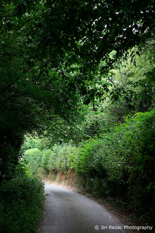UK ENGLAND ENGLAND SHROPSHIRE LLANYBLODWEL 1JUL15 - Country lane path near the river Tanat in Llanyblodwel, part of the river Severn catchment area.<br /> <br /> <br /> <br /> jre/Photo by Jiri Rezac / WWF UK<br /> <br /> <br /> <br /> © Jiri Rezac 2015