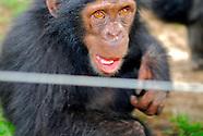 Sweetwater Primate Rehabilitation Center