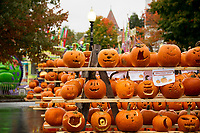 Pumpkins carved by area school children line the pallets during Pumpkin Fest on Saturday afternoon.  (Karen Bobotas/for the Laconia Daily Sun)