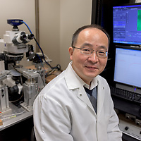 Jun Wang, M.D., Ph.D