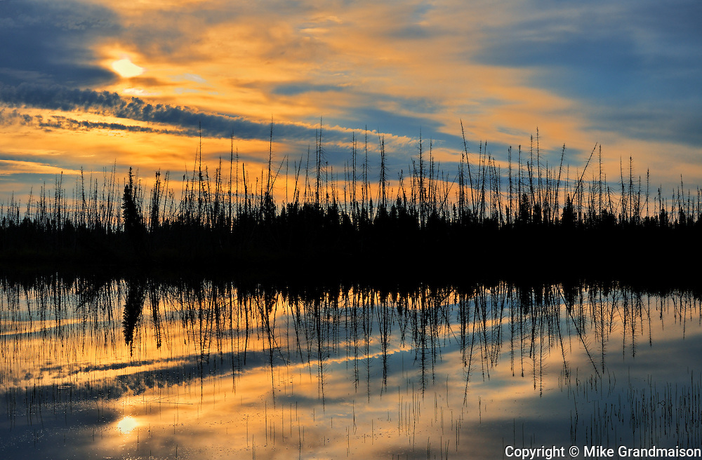 Old burn reflected in wetland at sunrise <br /> South of Pickle Lake<br /> Ontario<br /> Canada