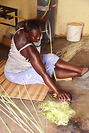 A member of Zamampilo processes sisal by running it under a can to break the casing