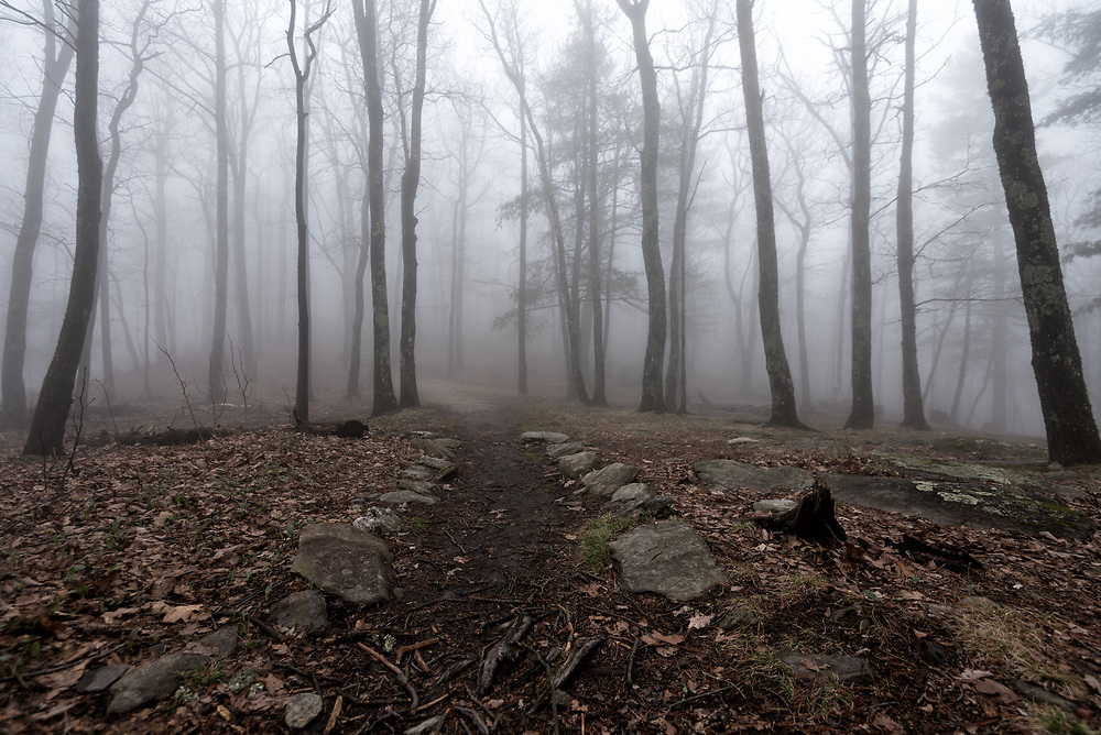 Trail to the Chimneys, Table Rock Mountain, North Carolina