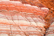 Evening light on strata detail of the Cockscomb, Grand Staircase-Escalante National Monument, Utah USA