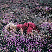 a woman is lying in blooming heather
