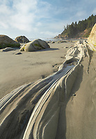 Sandstone rocks, Kalaloch Beach Olympic National Park Washington