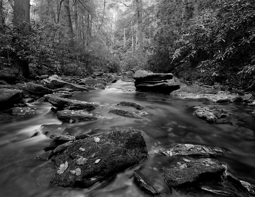 Noontoola Creek/North Georgia/Chattahoochee National Forest<br />