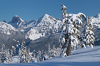 American Border Peak and Mount Larrabee in winter. Seen from Heather Meadows Recreation Area. North Caascades Washington