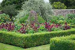 The parterre beds at Parham House with Amaranthus paniculatus 'Red Fox' and Tithonia rotundifolia 'Torch'. Low box hedges