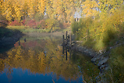 Idaho,North, Boundary County, Bonners Ferry. Morning mist clears to reveal the vibrant fall foliage reflected in the waters of Deep Creek in the Bonner Valley in autumn. PLEASE CONTACT US FOR DIGITAL DOWNLOAD AND PRICING.