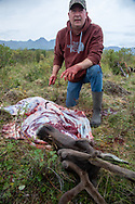 Bernie McGowan, from St. Louis, MO., field dresses and butchers Heidi Anderson's subsistence hunt caribou.