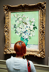 Visitor looking at painting Roses by Vincent van Gogh at the Metropolitan Museum of Art in Manhattan , New York City, USA