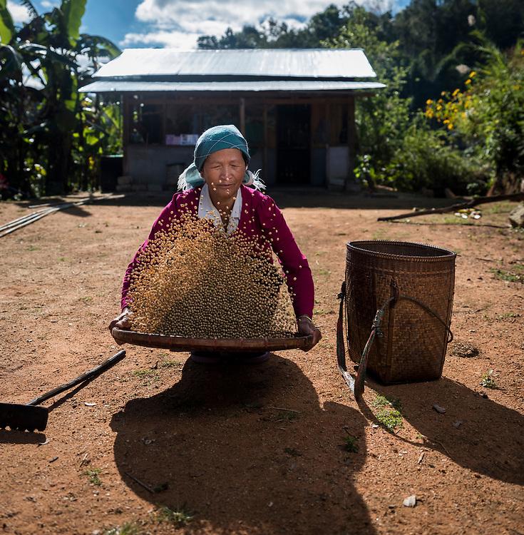 KYAING TONG, MYANMAR - CIRCA DECEMBER 2017:  Portrait of Wa woman working at the Naung Cho Wa Village of  near Kyaing Tong in Myanmar