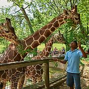20191030 Zoo