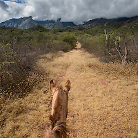 Climbing on horseback