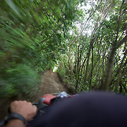 A quad biker drives through a forest track on a quad bike course near Taupo with Taupo Quad Bikes. Taupo, North Island,  New Zealand. 7th January 2011. Photo Tim Clayton