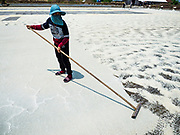 28 MARCH 2018 - SAMUT SONGKHRAM, SAMUT SONGKHRAM, THAILAND: A worker breaks up salt in a field during the 2018 salt harvest in Samut Songkhram, about 90 minutes south of Bangkok. Sea salt is made in provinces south of Bangkok by flooding fields with ocean water after the rainy season. As the fields dry out from evaporation, workers go into the fields and gather the salt left behind.       PHOTO BY JACK KURTZ