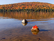 https://Duncan.co/maple-leaf-on-stone-in-lake